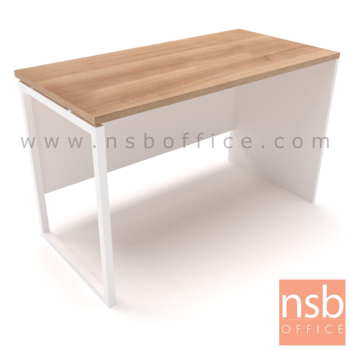 โต๊ะทำงานโล่ง รุ่น  Eric (อีริค) ขนาด 80W,120W,160W cm.  ขาเหล็ก