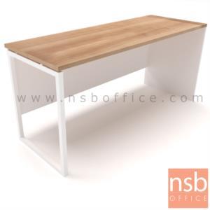 A10A089:โต๊ะทำงานโล่ง รุ่น  Eric (อีริค) ขนาด 80W,120W,160W cm.  ขาเหล็ก