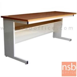A05A061:โต๊ะประชุมตรง รุ่น N-1MM ขนาด 119.7W ,152.5W ,182.5W cm.  ขาเหล็กขาตัวแอล
